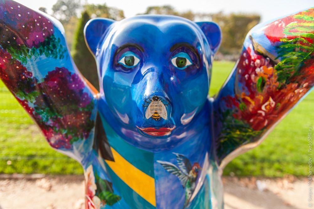 BuddyBears17 Превед, медведы!