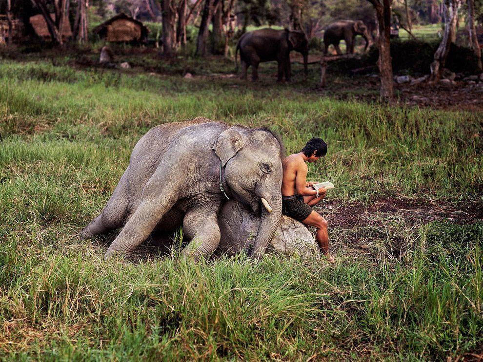 McCurry25 Самые красивые фотографии Стива Мак Карри со всего света