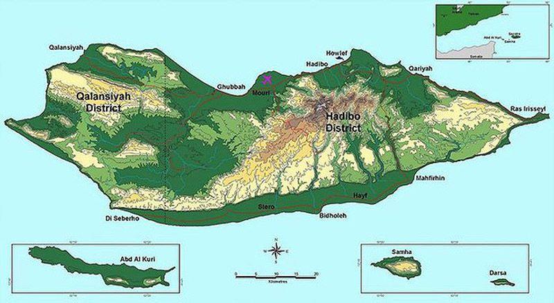 Socotra01 ������������ ������ �������