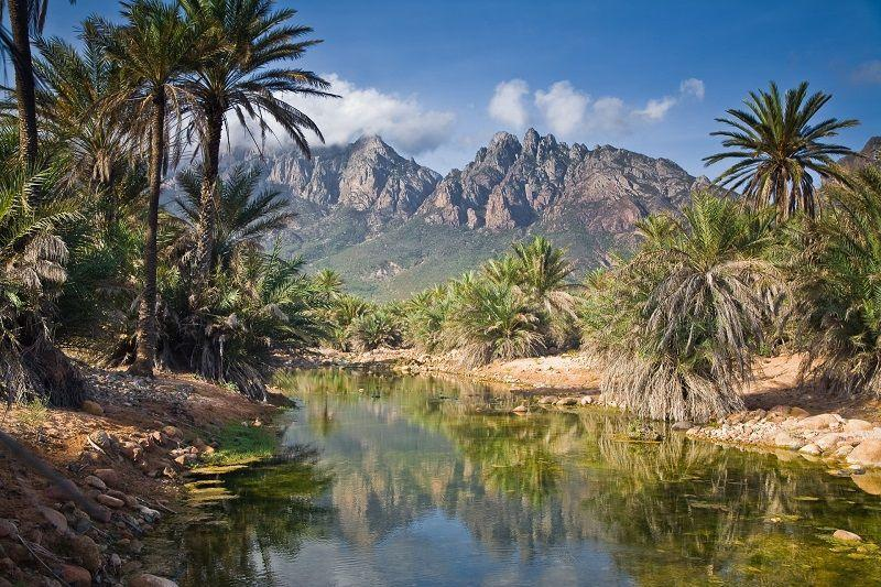 Socotra08 Удивительный остров Сокотра