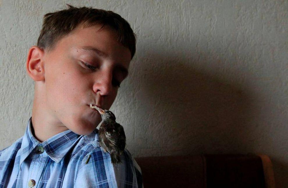 boy n sparrow04 Мальчик и воробей