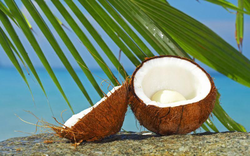 10 удивительных фактов о кокосах