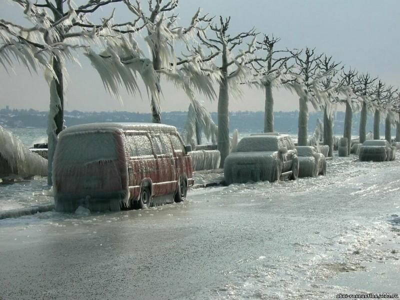 frozen09 800x600 Самые красивые фотографии морозной зимы