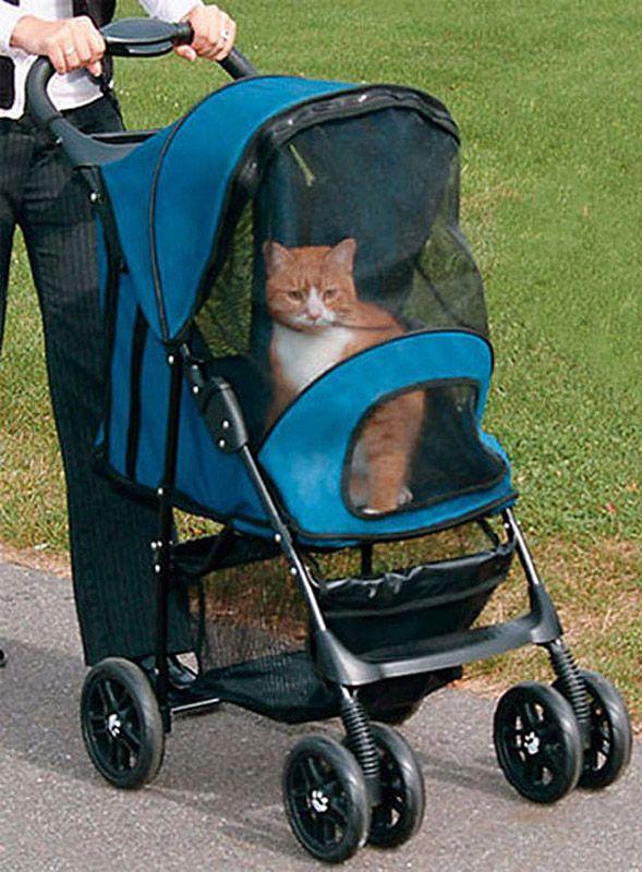 wierd4cats04 Странные товары для кошатников
