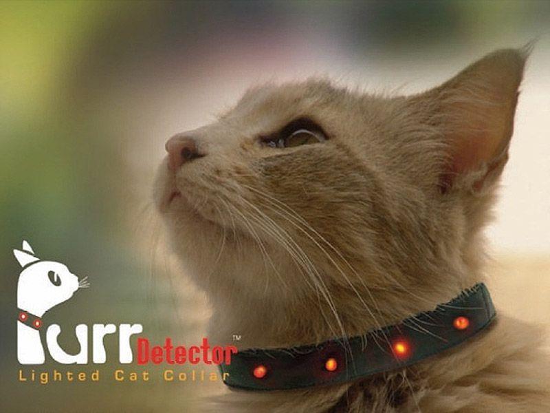 wierd4cats05 Странные товары для кошатников