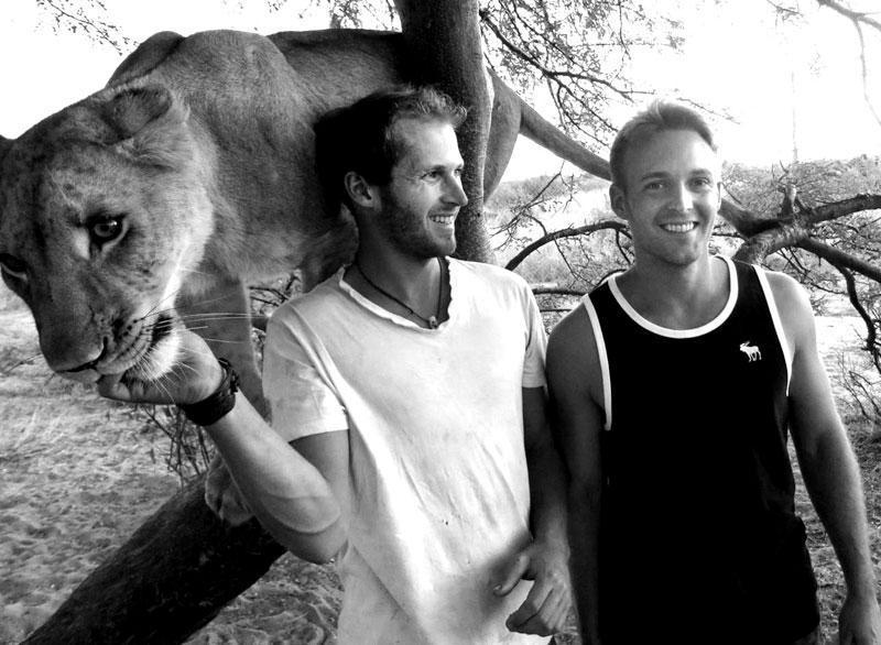 withLions10 Как я жил со львами в Ботсване