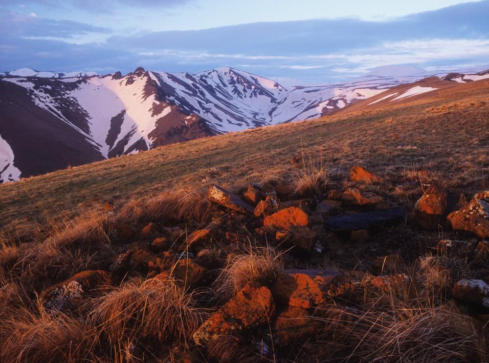 Analogphotos12 Прекрасные пленочные пейзажи Ивана Дементиевского