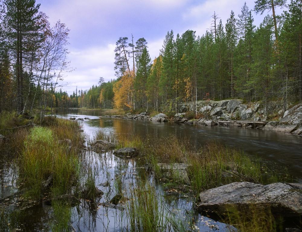 Analogphotos15 Прекрасные пленочные пейзажи Ивана Дементиевского