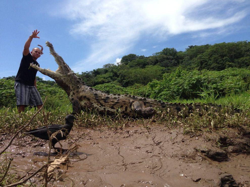 Croco04 Заклинатель крокодилов из Коста Рики