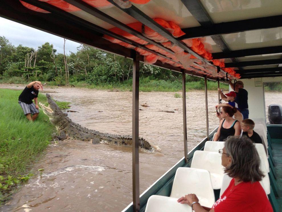 Croco07 Заклинатель крокодилов из Коста Рики