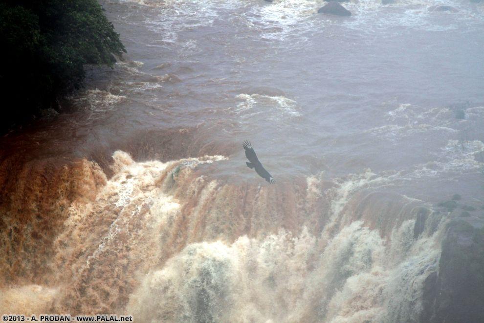 Iguazu07 Водопады Игуасу