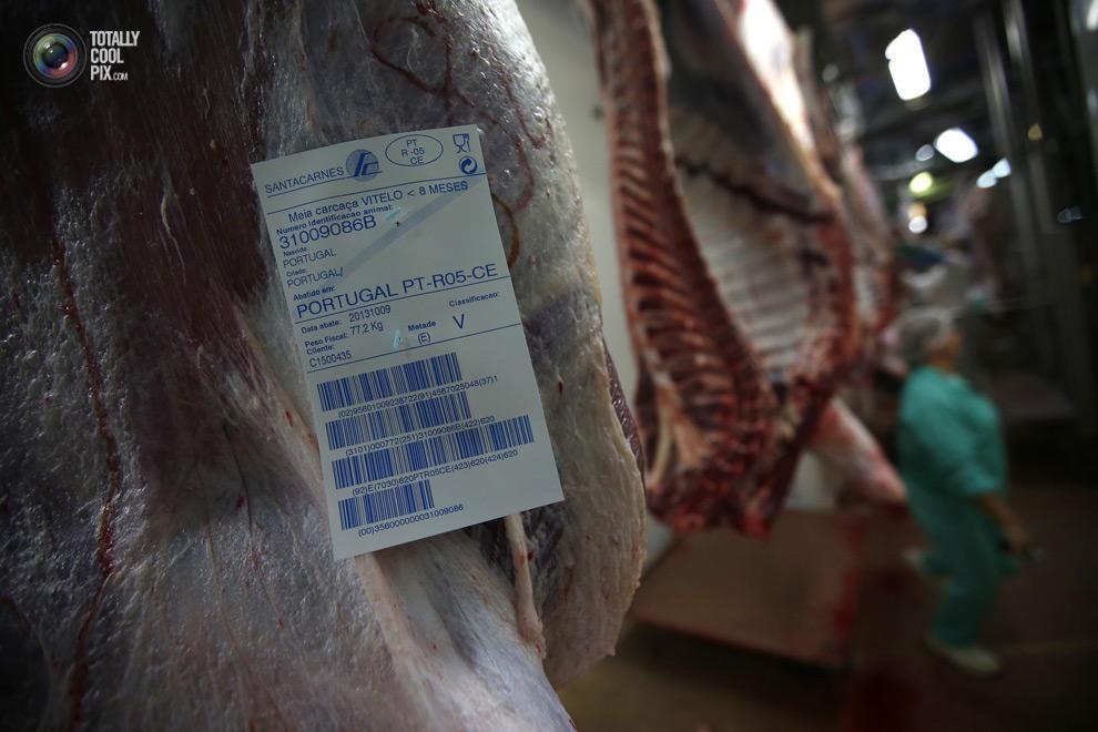 MakeMeat10 Как делают мясо, которое мы едим