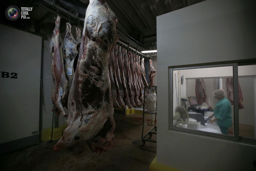 MakeMeat11 Как делают мясо, которое мы едим