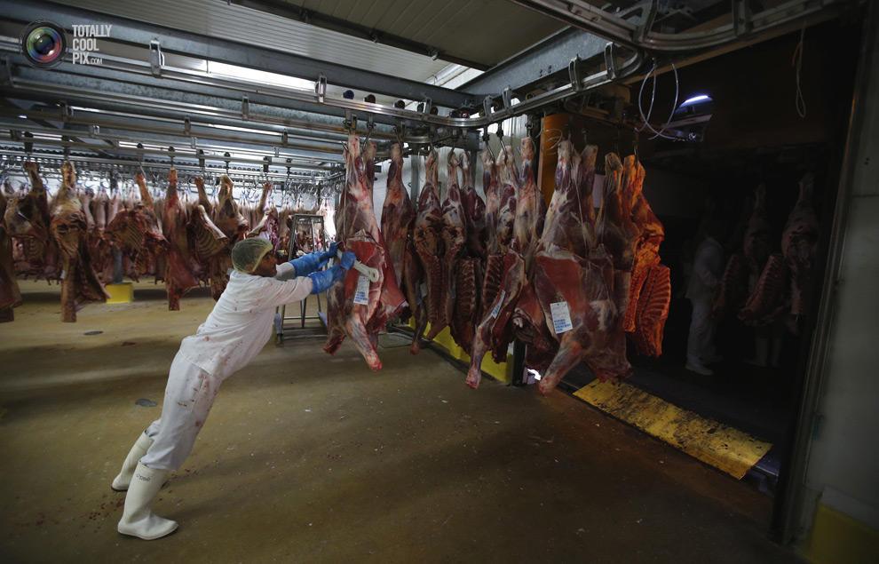 MakeMeat15 Как делают мясо, которое мы едим