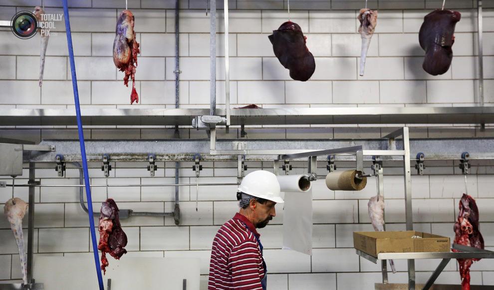 MakeMeat26 Как делают мясо, которое мы едим
