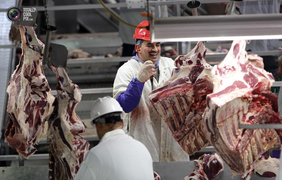 MakeMeat31 Как делают мясо, которое мы едим