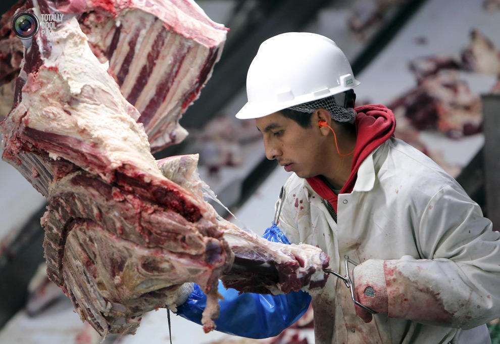 MakeMeat32 Как делают мясо, которое мы едим