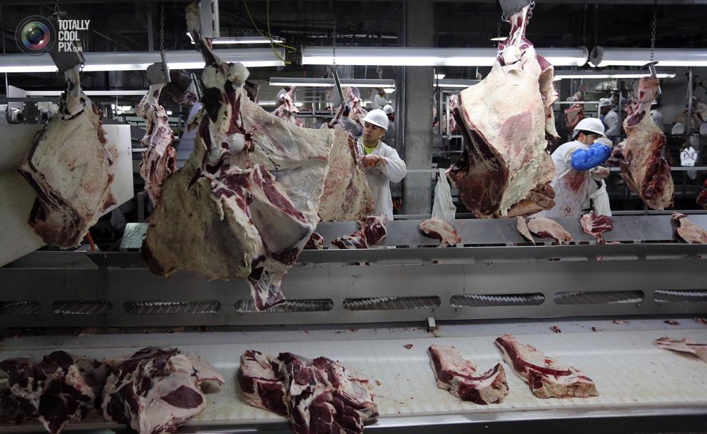 MakeMeat34 Как делают мясо, которое мы едим
