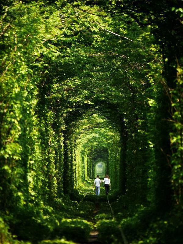 Surrlandscape03 Самые сюрреалистические пейзажи нашей планеты