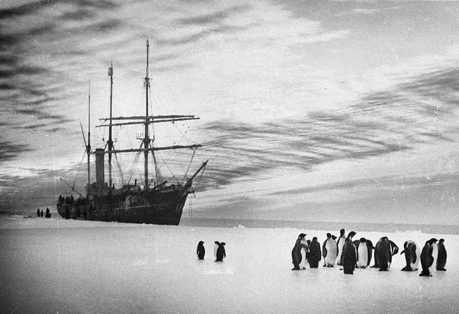 antarctica10 Самые впечатляющие фотографии Антарктиды начала 20 века