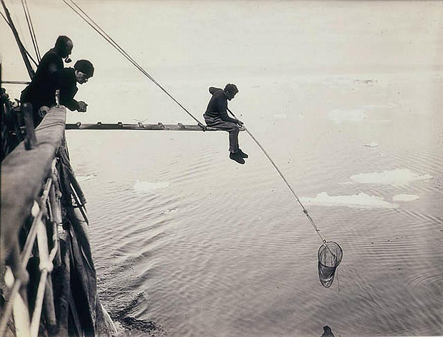 antarctica12 Самые впечатляющие фотографии Антарктиды начала 20 века