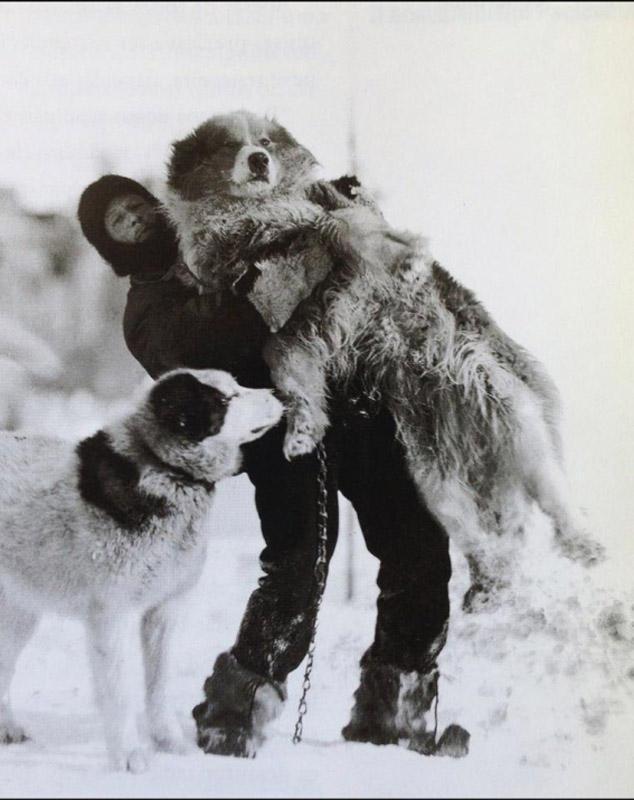 antarctica14 Самые впечатляющие фотографии Антарктиды начала 20 века