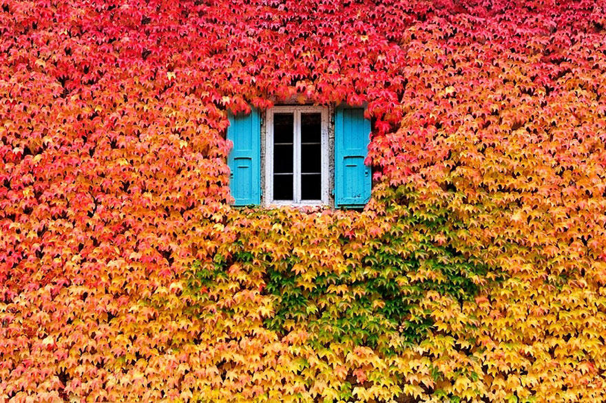fall021 Краски осени