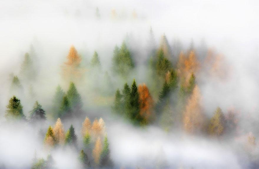 fall051 Краски осени