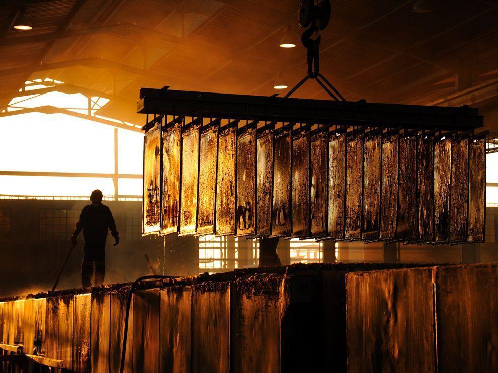 natgeowllppr13 Обои для рабочего стола от National Geographic за сентябрь 2013