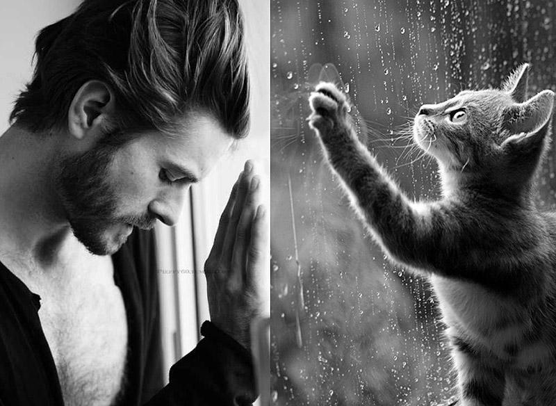 MenandCats17 Мужчины и котики