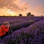 Яблочко от яблоньки: сын фотографа делает удивительные снимки