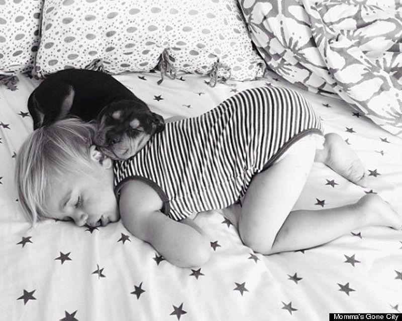 TheoBeau05 Тео и Бо   самые милые сони на свете