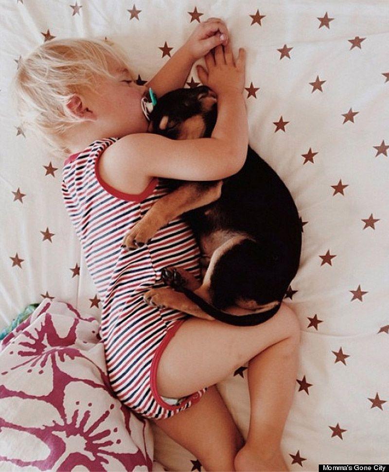 TheoBeau06 Тео и Бо   самые милые сони на свете