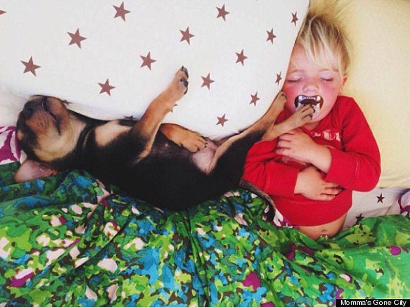 TheoBeau10 Тео и Бо   самые милые сони на свете