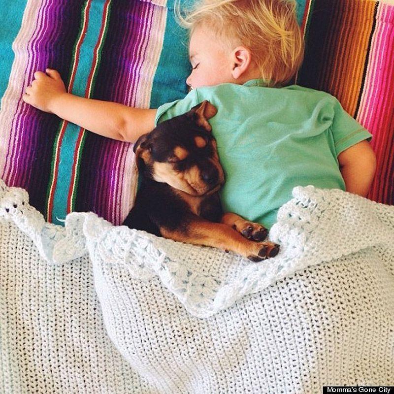 TheoBeau11 Тео и Бо   самые милые сони на свете