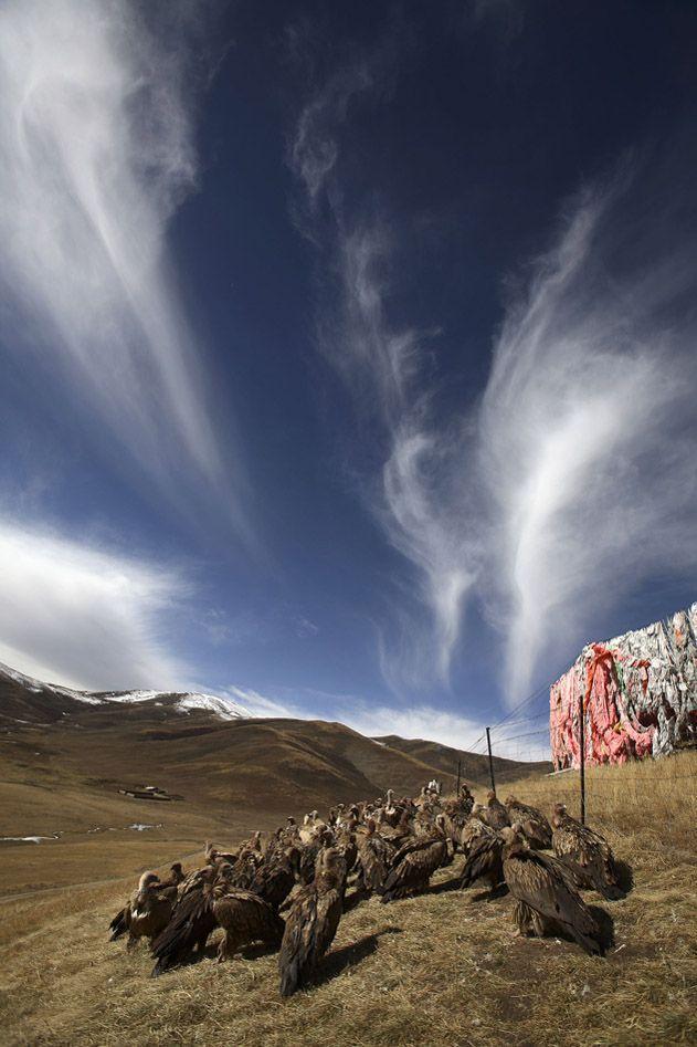 jhator03 Небесное погребение в Тибете