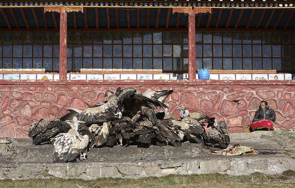 jhator07 Небесное погребение в Тибете
