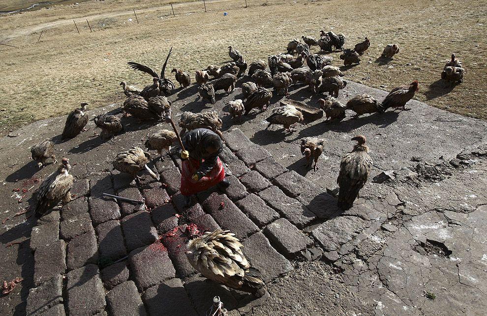 jhator10 Небесное погребение в Тибете