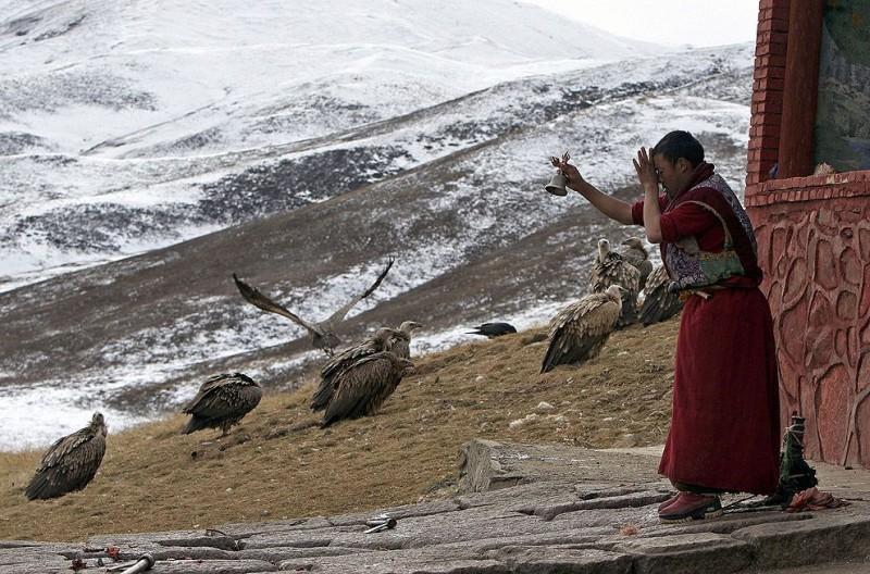 jhator16 800x528 Небесное погребение в Тибете