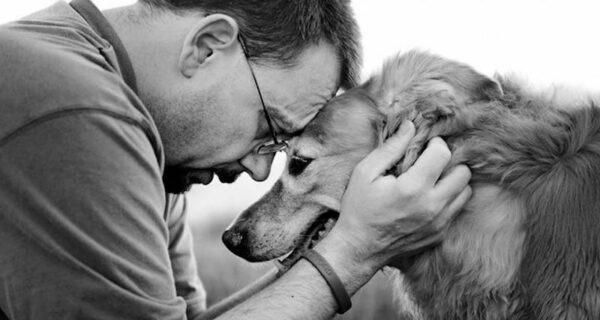 Прощание навеки: фотограф снимает последний момент любви между хозяином и собакой перед усыплением