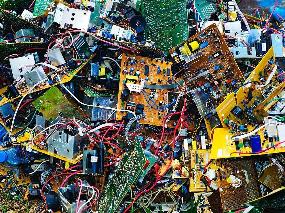natgeowllppr24 Обои для рабочего стола от National Geographic за ноябрь 2013