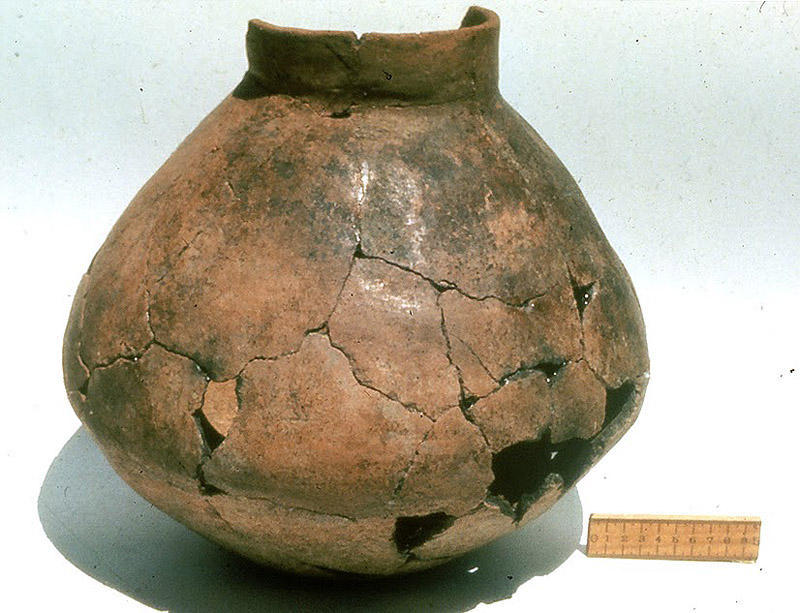Самый древний алкоголь