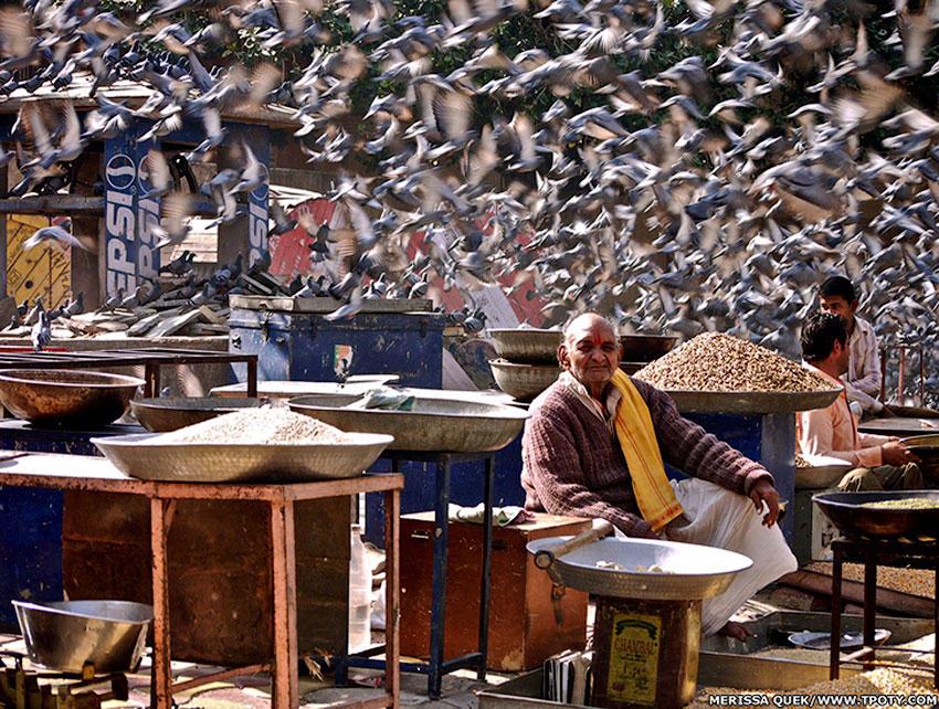 В категории начинающих также оказалось два победителя. Одну из наград получил снимок продавца зерна в Джайпуре, в Индии, снятый Мериссой Куек.