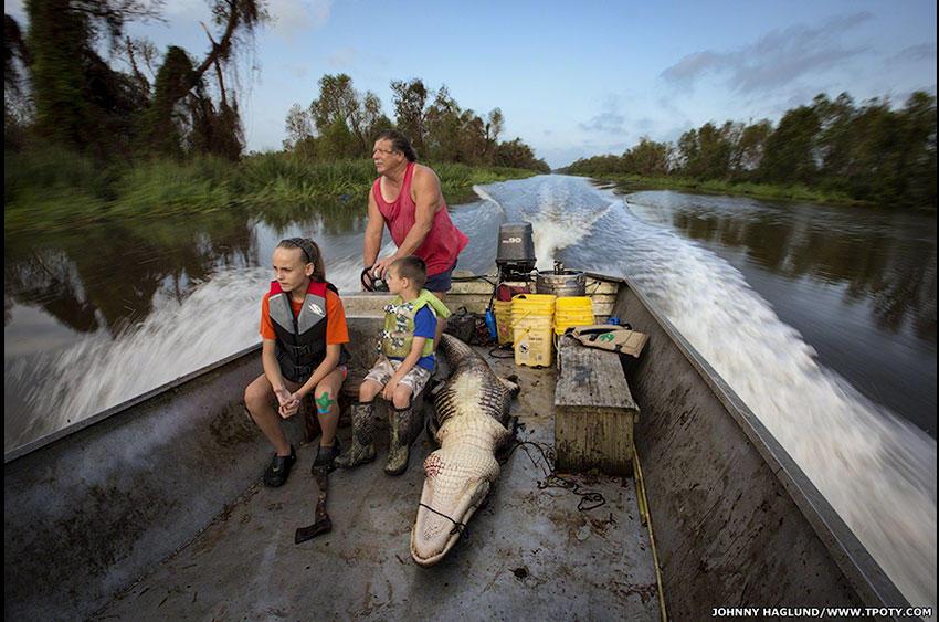 А вот Джонни Хаглунд отразил в своей работе охоту на аллигаторов в штате Луизиана, в США.