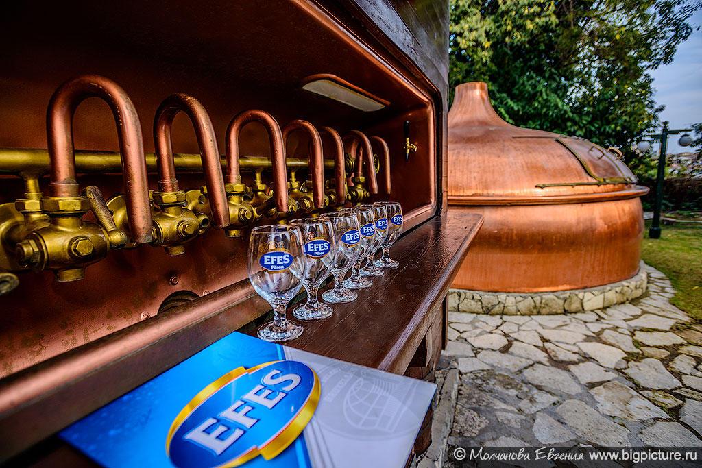 В состав группы Efes входит 16 пивоварен в 6 странах — Турции, России, Казахстана, Молдавии, Грузии, Сербии, а также подразделения в Беларуси и Азербайджане.