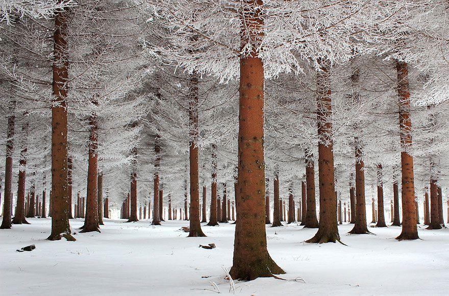 WinterLandscapes02 Восхитительные зимние пейзажи