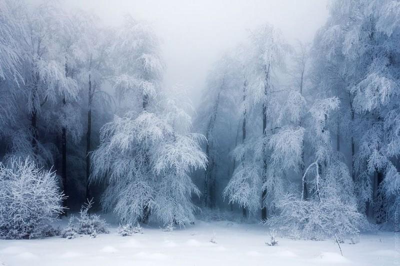 WinterLandscapes06 800x533 Восхитительные зимние пейзажи
