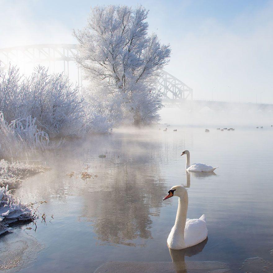 WinterLandscapes08 Восхитительные зимние пейзажи