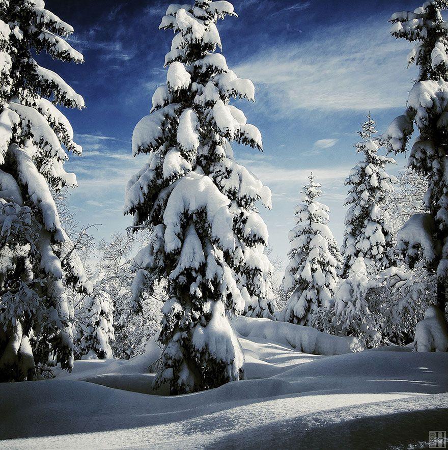 WinterLandscapes19 Восхитительные зимние пейзажи