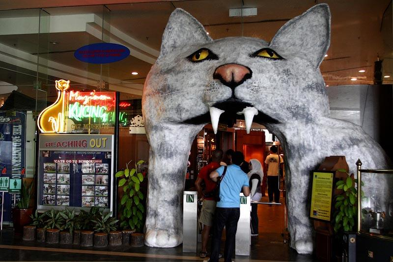 cats05 10 мест, в которых обожают кошек